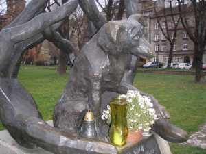 Krakow's dog loyal to its dead master