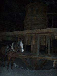 Krakow salt mines: traditional power (horse is not live!)