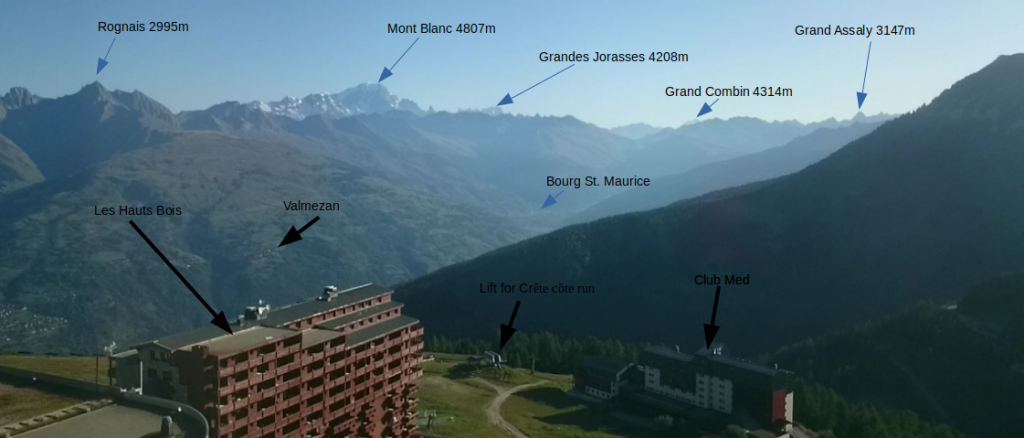 Annotated view of the timelapse videos